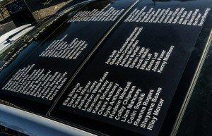 Racing Names 2014